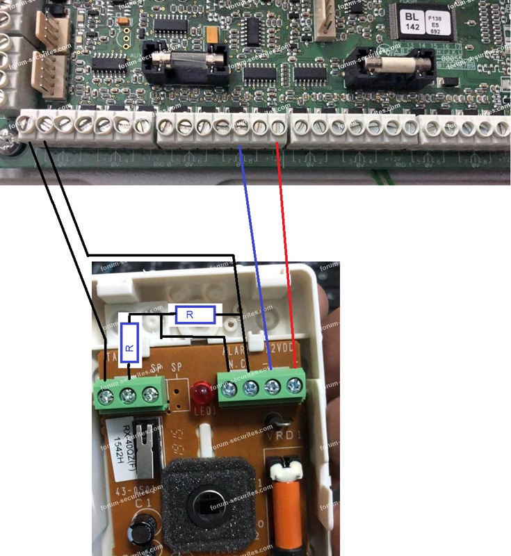 Schéma raccordement Galaxy et détecteurs Optex
